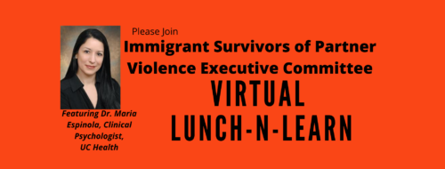 Immigrant Survivors of Partner Violence Virtual Lunch-n-Learn
